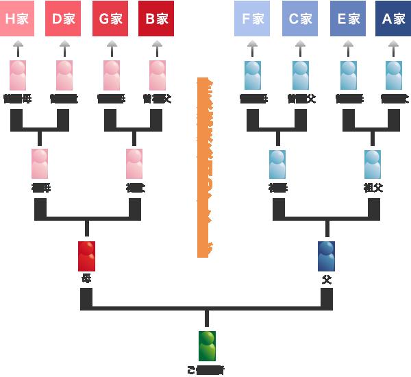 全系統家系図