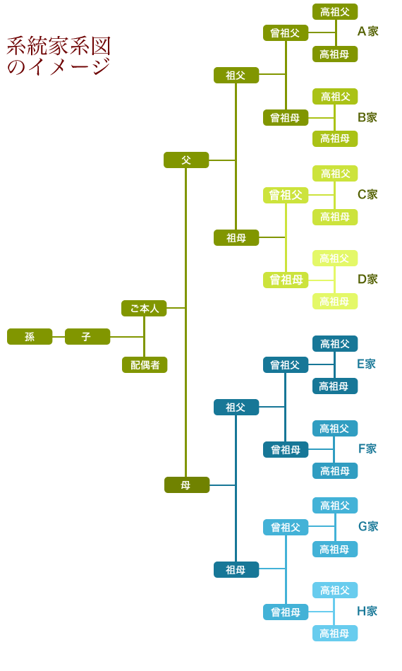 系統家系図